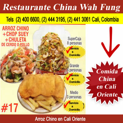 Arroz Chino + Chop Suey + Chuleta de Cerdo O de Pollo en Cali